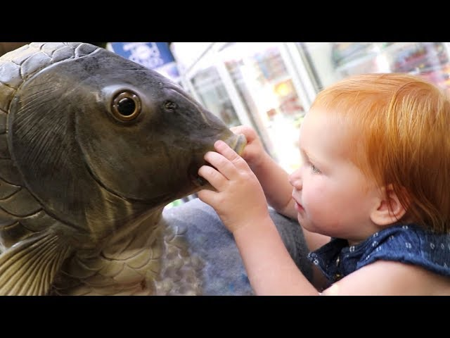 giant-fish-vs-baby