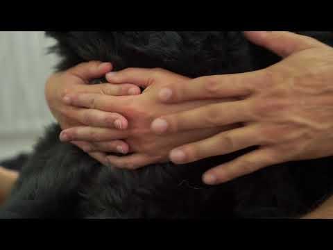 Forbidden Fur Luxury fur blankets