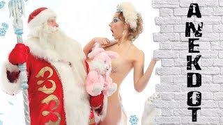 Ночь с Дедом морозом. Анекдот про Новый Год.
