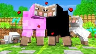 O NAMORADO DA PINK : ROMANCE MINECRAFT