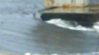 Brewsters Pond Flooding