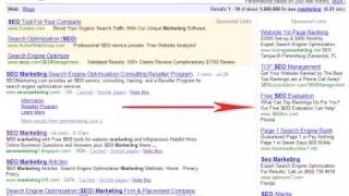 Web Seo PPC NY Vs Organic Search Engine Optimization