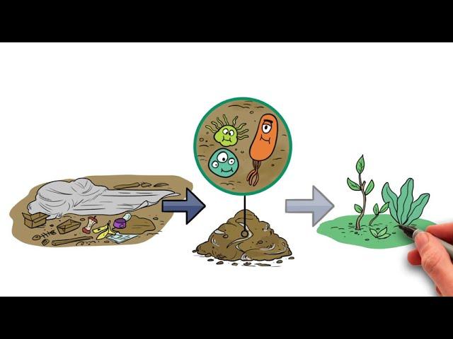 Embalajes de Plástico Biodegradable | Controlpack