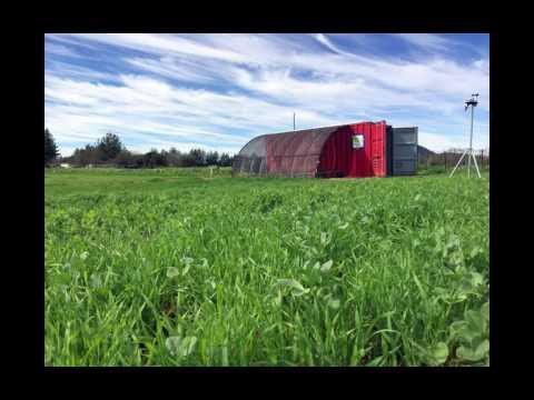 Brandi DeCarli on Farm from a Box