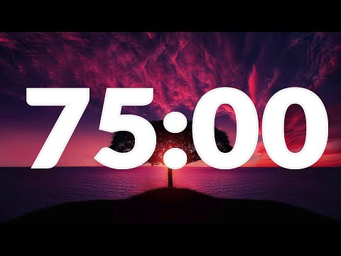 75 Minute Timer with Alarm, without music