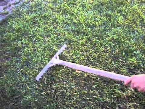 C mo resembrar el c sped youtube - Como plantar cesped en el jardin ...