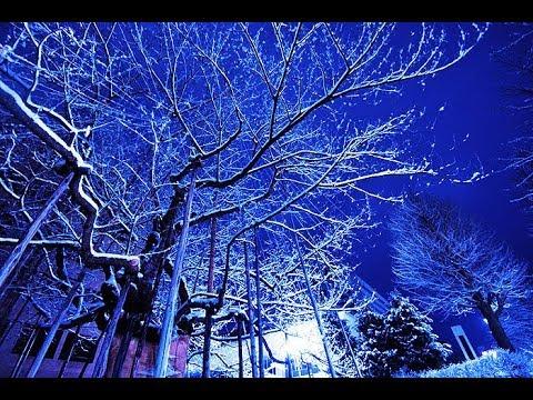 の 外 は 歌詞 雪 白い 夜