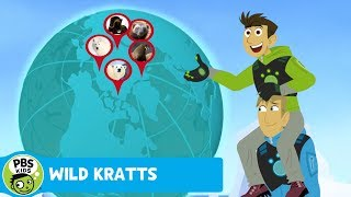 Wild Kratts: Where are the Polar Bears? thumbnail