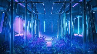 Ryos feat. Maggie Szabo - Midsummer Nights (Festival Mix)