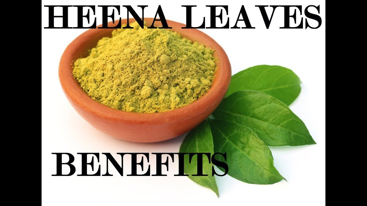 Henna Leaves Benefits Helpful In Liver Problems Remove Stress