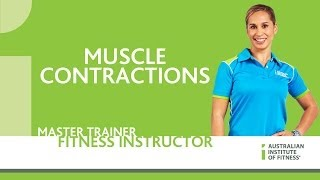 muscle contractions