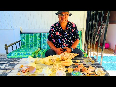 Please help Mr  Rais to start an international sea shell museum in Malaysia !