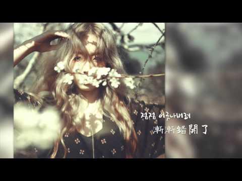 쌍둥이자리(Gemini) - 태연(Taeyeon) 韓中字