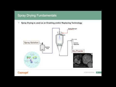 Spray Dried Biologics: Formulation and Process Considerations