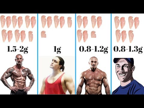 How Much Protein To Build Muscle? The TRUTH!