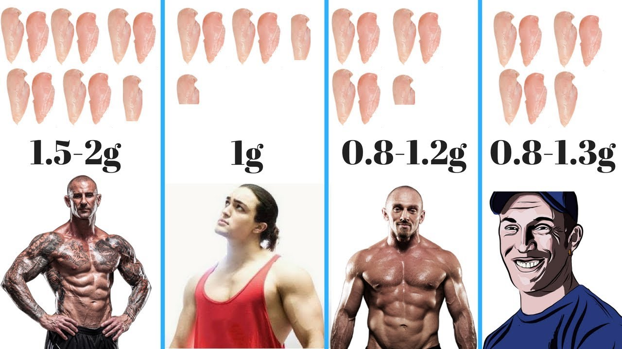 How much protein per day lean bulk