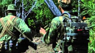 green berets special forces
