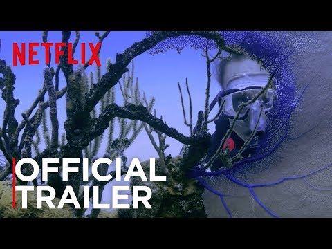 Chasing Coral   Official Trailer [HD]   Netflix