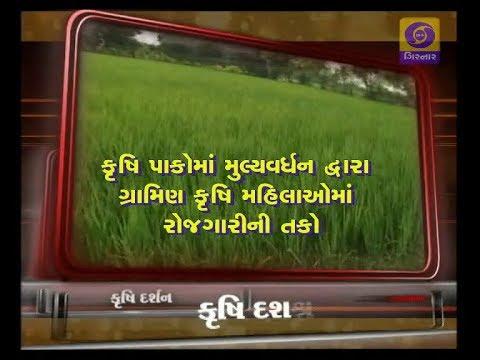 KRISHI DARSHAN | Krushi Pakoma Mulyavardhan Dwara Gramin Krushi Mahilaoma Rojgarini Tako
