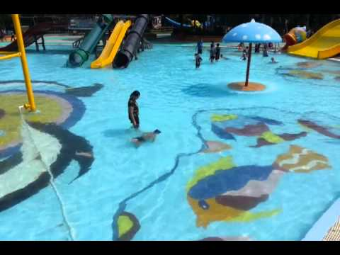 Book Of Ra Freispiele Im Demo | WetNjoy Water Park Shirdi