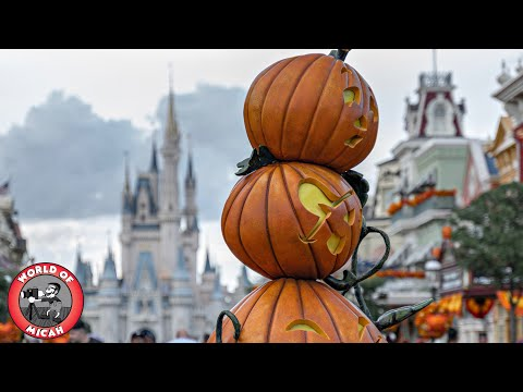 Halloween Season at MAGIC KINGDOM Walt Disney World! Hidden details on Main Street & Haunted Mansion