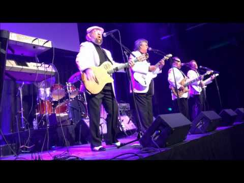The Association - Concert - Austin Texas 2017
