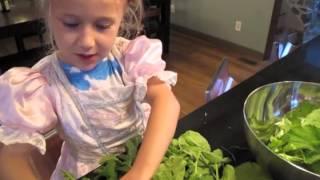 Watermelon Fennel Salad