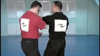 Вин Чун - техника и тактика боя