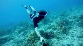 Go pro Diving Mask