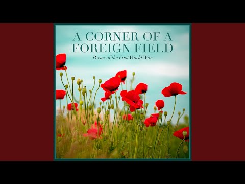 siegfried sassoon counter attack essay This feature is not available right now please try again later.