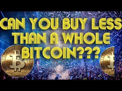 Can You Buy A Small Part Of A Bitcoin? What Is The Smallest Fraction Of Bitcoin You Can Buy?