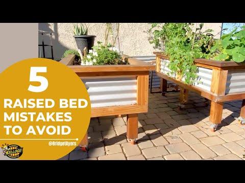 5 Raised Bed Garden Mistakes to Avoid