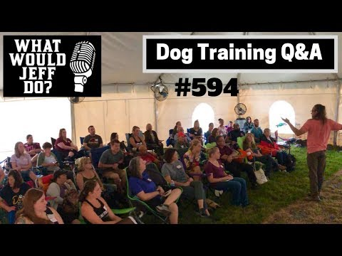Dog Training - Dog Barking - Dog Reactivity - What Would Jeff Do? Q&A  Ep.594 (2019)