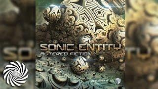 Sonic Entity - Akasha Field