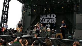 "Mad Caddies ""She"" (Green Day ska/rocksteady cover) at Huntington Beach Surf City Blitz 10/27/18 live"