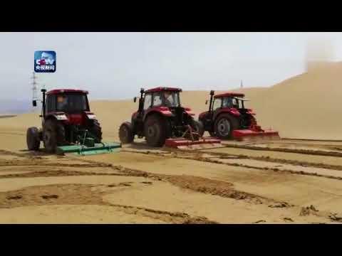Desert turns into
