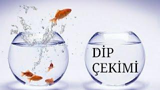 Su Değişimi - Dip Çekimi