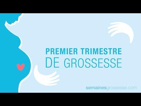 grossesse semaine par semaine, trimestres décharge, du sein écoulement mammaire