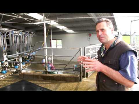 Using Technology to convert Sheep to Dairy Farm