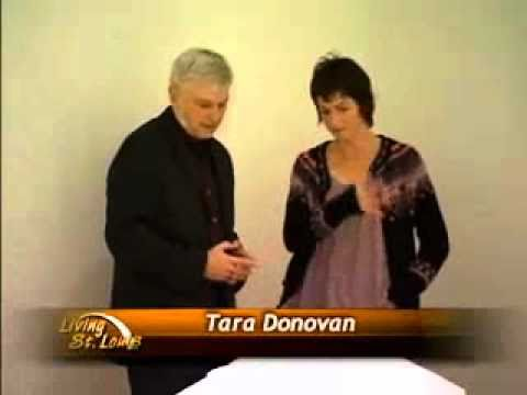 Tara Donovan: An interview with KETC during her visit to the St. Louis Art Museum