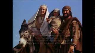 De l'islam à Jésus-Christ : 4 raisons de se convertir !