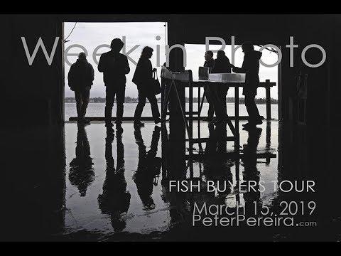 Week in Photo: Fish Buyers Tour