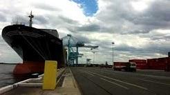 MSC Florida @Talleyrand terminal in Jacksonville