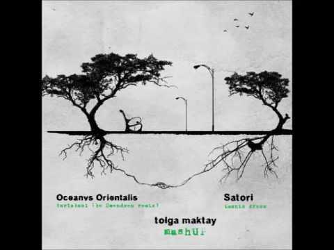 Oceanvs Orientalis-Tarlabasi Be swendsen rmx vs  Satori-İmanis Dress (Tolga Maktay mashUP) video download