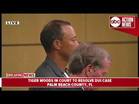 Tiger Woods pleads guilty in court to reckless driving