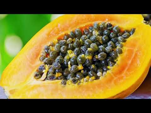 Martha Quinn - Wellness Shot: Health Benefits Of Papaya Seeds