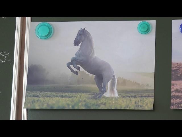 8 клас. Українська література. Володимир Дрозд. «Білий кінь Шептало».