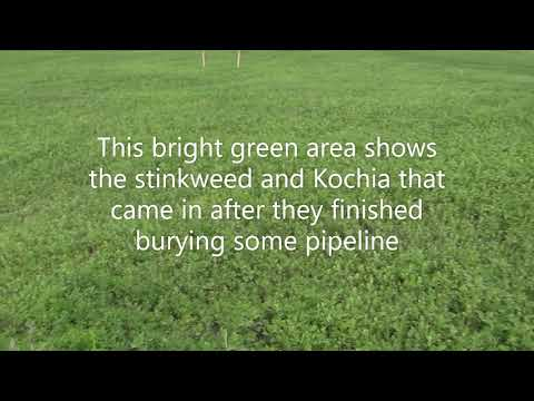 Industrializing The Prairie: Solution Potash Mining In Saskatchewan