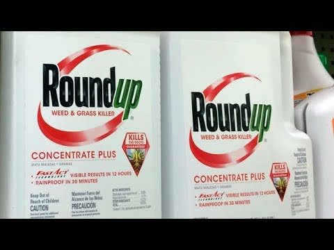 Monsanto ordered to pay $289M over claims weed killers caused cancer