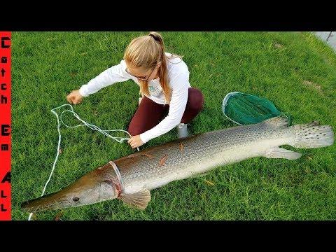 GIANT GAR FISH In LOUISIANA!